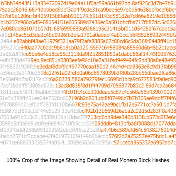 Monero Logo Hashes Poster Detail